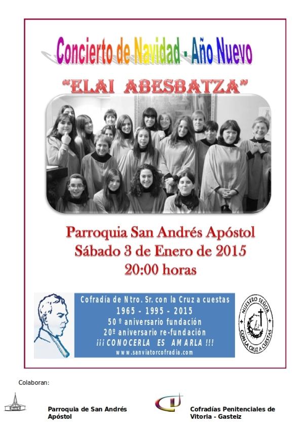 Cartel Concierto 03-01-2015 (2)